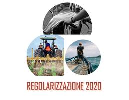 Regolarizzazione 2020, come compilare la domanda: procedure, FAQ e materiali multimediali anche in lingua