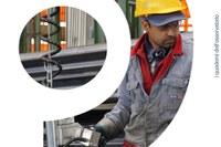 Cittadini stranieri in Emilia-Romagna. Mercato del lavoro e dinamiche occupazionali